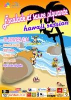 SAUCE-PIK-HAWAII-SESSION2014-600x849-22112013.jpg